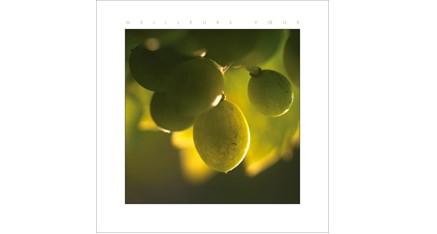 ES.01 - Raisins de juillet