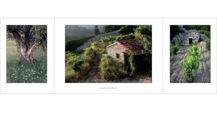L.71 - Languedoc