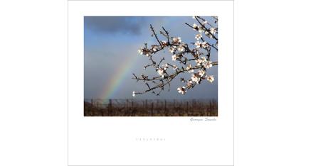 ET.03 - Languedoc