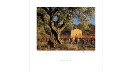 ET.05 - Languedoc