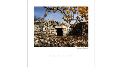 ET.06 - Terrasses du Larzac