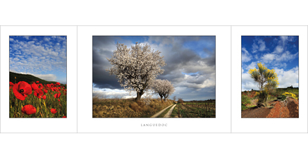 L.77 - Languedoc