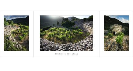 L.89 - Terrasses du Larzac
